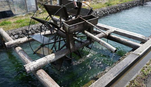 【安並水車の里】江戸時代の水車を眺めながらのんびりできる
