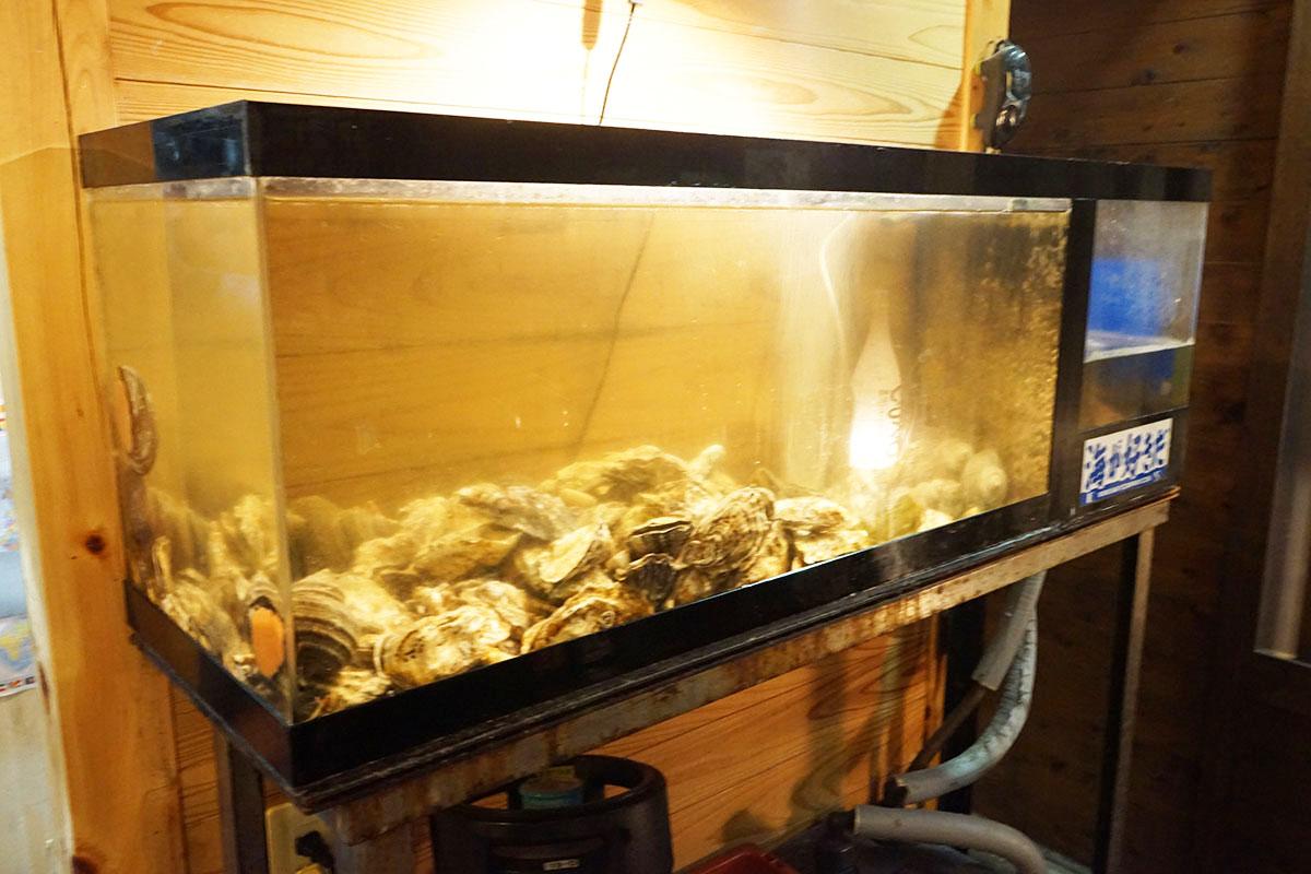 四万十のらくろの牡蠣