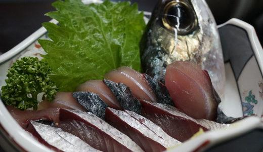 【居酒屋ちきちん】超新鮮なビリビリ清水サバがプリプリを通りこしてモチモチ!