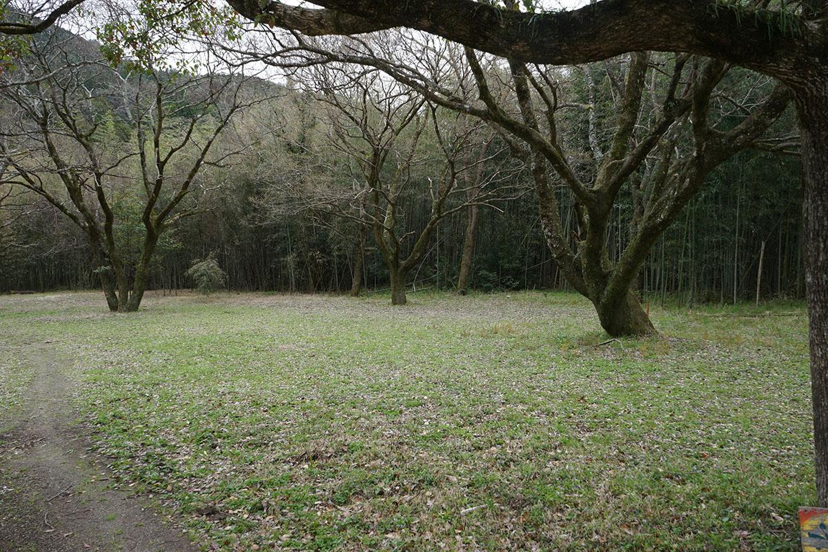 三島キャンプ場のバンガロー、テントサイト