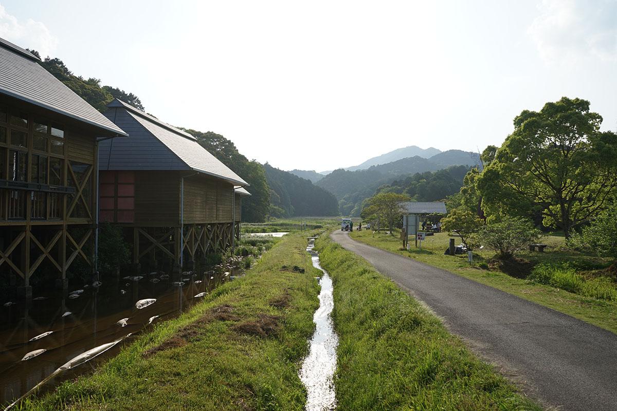トンボ自然公園