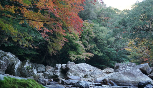 【黒尊渓谷の紅葉】時期、見ごろ、スポットなどまとめました。